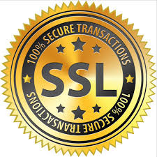 Secure  Transaction. SSL 256 Bit Encryption. 100% Guaranteed Safe & Secure Transaction